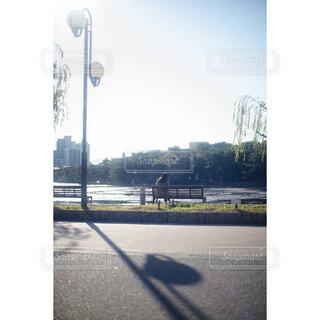 大濠公園の写真・画像素材[4466239]