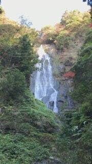 自然,紅葉,屋外,水面,滝,マイナスイオン
