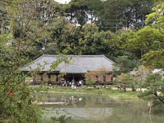 建物,屋外,水面,草,家,樹木,寺,建築