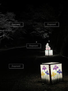 鶴ヶ城ライトアップの写真・画像素材[4466470]