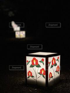 鶴ヶ城ライトアップの写真・画像素材[4466472]