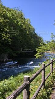 自然,風景,空,建物,森林,木,屋外,湖,川,水面,景色,樹木,新緑,フェンス,木目,草木