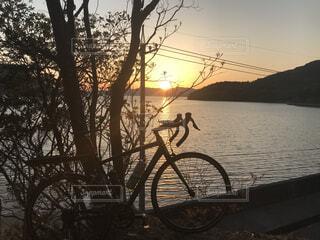空,自転車,屋外,朝日,水面,ロードバイク,朝の運動