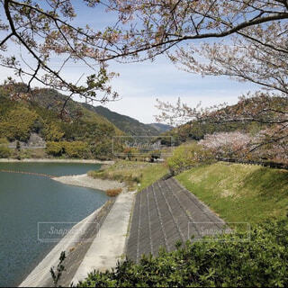 自然,空,秋,屋外,湖,水面,山,樹木,道,旅行,草木