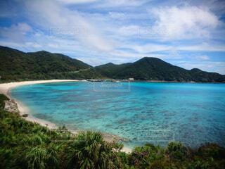 渡嘉敷島の展望台から臨む海の写真・画像素材[4565076]