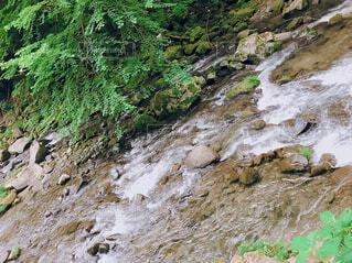 自然,風景,屋外,水面,山,滝,岩,草木