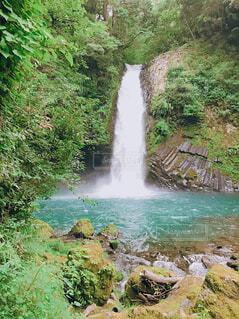 自然,屋外,水面,滝,樹木,岩,草木