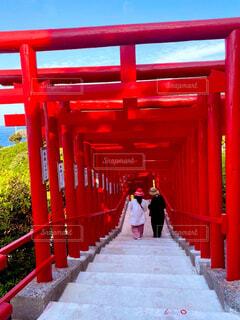 屋外,神社,赤,鳥居,快晴,元乃隅稲成神社,稲荷