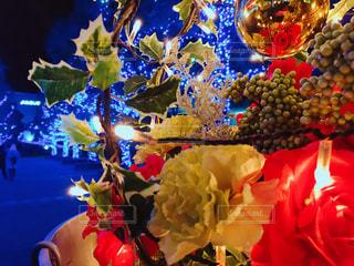 色とりどりの花のグループ - No.925513