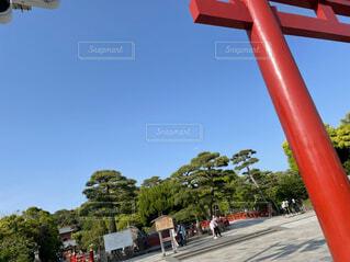 空,屋外,神社,赤,鳥居,樹木,景観