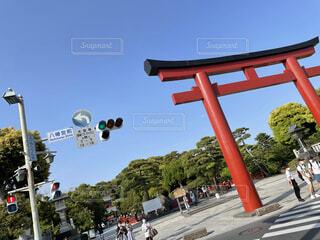 空,屋外,神社,青空,鳥居,樹木