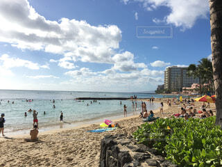 ハワイの浜辺の写真・画像素材[4509056]