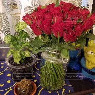 花,屋内,花束,花瓶,バラ,薔薇,草木