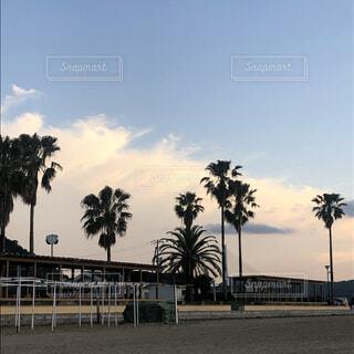空,夏,夕日,ビーチ,砂浜