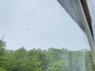 空,雨,樹木,梅雨,時雨
