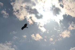 空、光と影。の写真・画像素材[4477906]