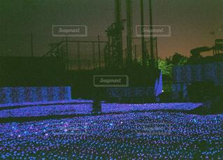 夜景,青,鮮やか,イルミネーション