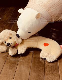 犬,屋内,床,ぬいぐるみ,おもちゃ,テディベア,クマ