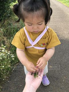 子ども,風景,屋外,草,人物,人,赤ちゃん,地面,幼児,少年,少し,人間の顔