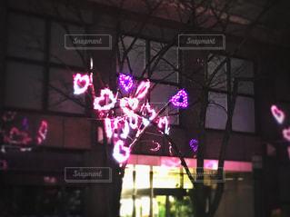 夜景の写真・画像素材[441615]