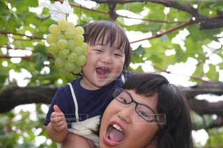 木の隣に笑みを浮かべて少女の写真・画像素材[779948]