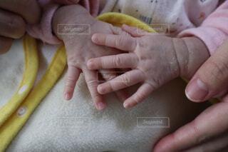 屋内,手,人物,人,赤ちゃん,幼児