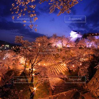 夜の街の景色の写真・画像素材[1143887]