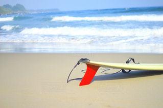 サーフィンの写真・画像素材[1217558]