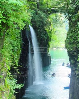 滝の写真・画像素材[1448022]
