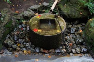 京都の写真・画像素材[758919]