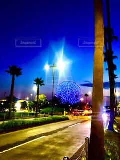 空,夜景,屋外,観覧車,花火,樹木,都会,ヤシの木,明るい,交通,街路灯