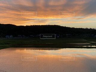 自然,風景,空,屋外,湖,ビーチ,雲,夕暮れ,水面,反射,樹木