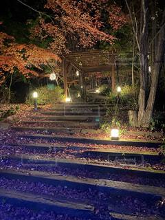 温泉,夜景,紅葉,意外と段差ある