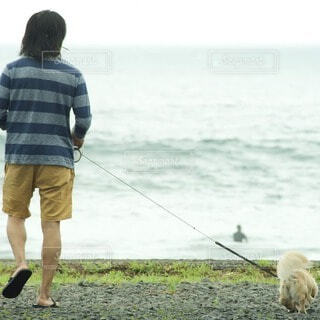 男性,犬,海,夏,人物,人,ミニチュアダックス,野外,surfing,海散歩