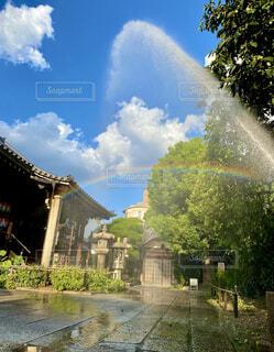 水巻きで虹が登場の写真・画像素材[4675272]