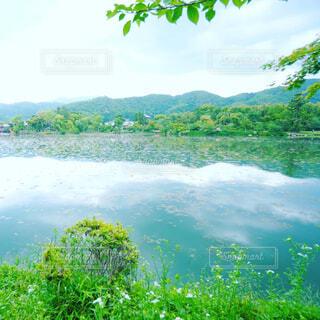 自然,風景,空,屋外,湖,川,水面,山,樹木