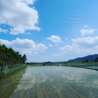 自然,風景,空,屋外,湖,雲,川,水面,樹木,道,草木