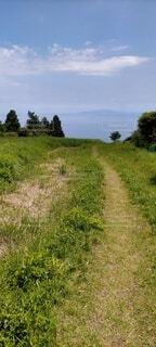自然,風景,空,夏,屋外,緑,景色,草,樹木