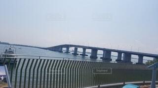 橋,屋外,滋賀県旅
