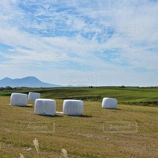 風景,空,屋外,緑,草原,雲,青空,牧場,景色,草,景観,大観峰,干し草