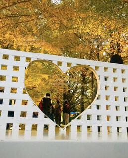 秋,紅葉,ベンチ,アート,樹木,イチョウ,銀杏,愛,デート,景観,パート
