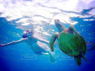 海,空,スポーツ,屋外,青,水面,沖縄,泳ぐ,水中,宮古島,カメ,ウミガメ,ダイビング,シュノーケル,爬虫類,亀