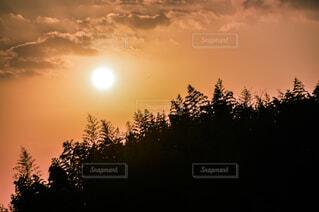 自然,空,屋外,太陽,雲,夕暮れ,樹木,日の出,設定