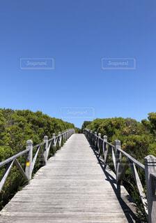 自然,風景,空,建物,橋,屋外,樹木,地面,草木