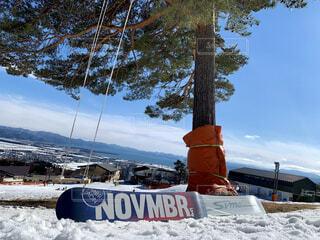 空,冬,雪,屋外,山,樹木,スキー,スノーボード,斜面,ウィンタースポーツ