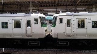 屋外,駅,鉄道,国鉄 185系 特急 踊り子