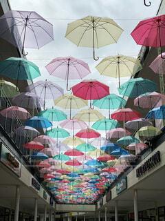 自然,アクセサリー,雨,傘,テント,カラー