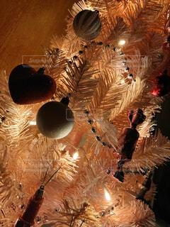 屋内,癒し,キラキラ,明るい,クリスマス ツリー
