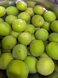 食べ物,緑,梅,果物,自然食品