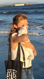 風景,空,夕日,屋外,ビーチ,砂浜,波,水面,少女,ペット,子猫,人物,白猫,人,夕陽,江ノ島,鎌倉,人間の顔,白猫オッドアイ